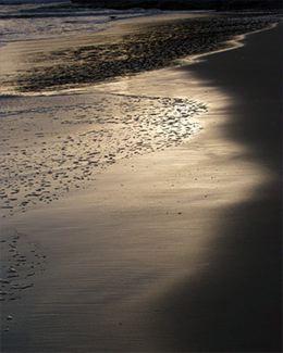 Shorescape