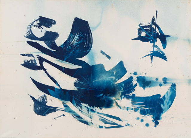 Cyanotype by John Pauplis
